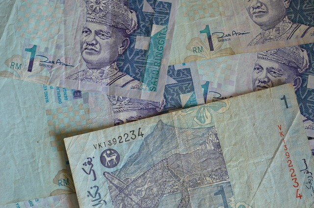 banknotes-166845_640