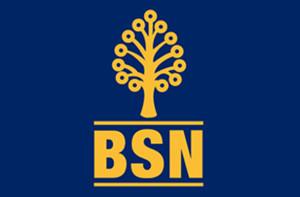 bsn-personal-loan[1]