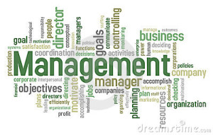 management-word-cloud-19209387