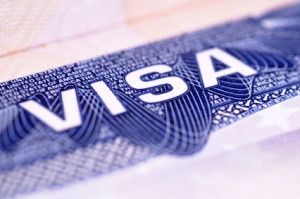 Detail from a US visa document. Selective focus with point of focus in the center of the picture.Note to image inspector: the speckly edges (which could be mistaken as being sharpening artifacts) are actually due to the metallic ink used in the printin